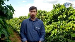 INOVAÇÃO E EMPREENDEDORISMO NO AGRONEGÓCIO